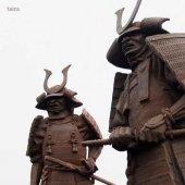 samurajové